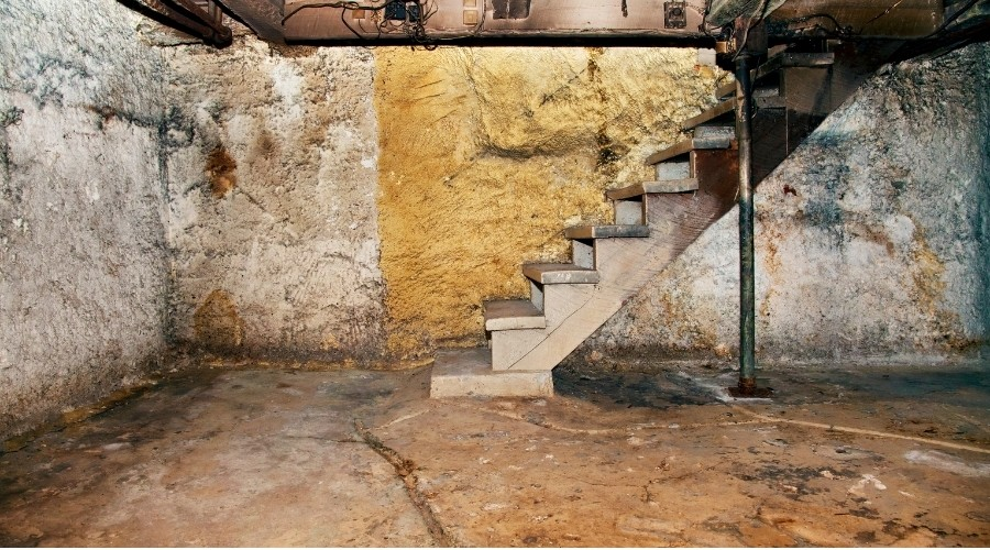 Damp Spaces vs. Dry Spaces…. Which Space Do You Want To Live In?